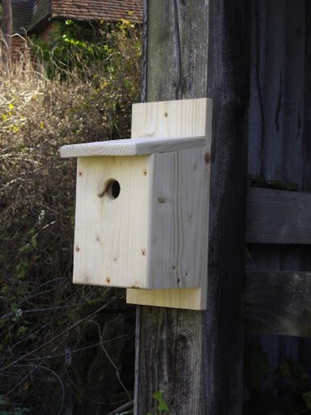 British made birdbox kits