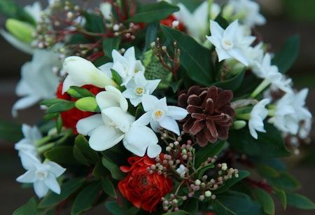 English Flowers at Christmas, Shamini