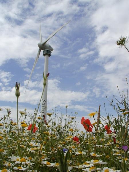green energy, eco, environmentally friendly, renewable energy