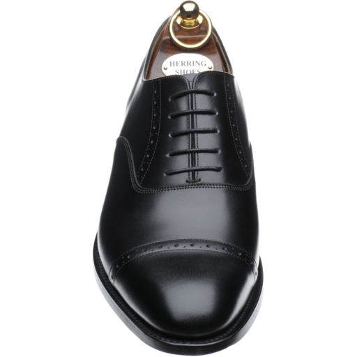black brogues, Herring