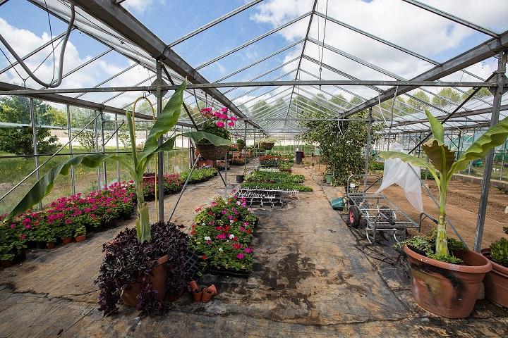 HMP Send, gardens