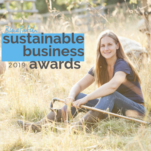 Sustainable Business Awards 2019