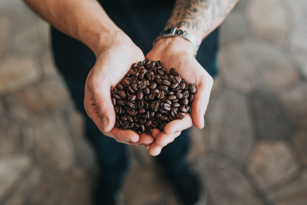 ethical coffee beans cupped in hands